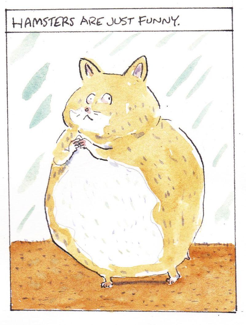 Hamster show_0020